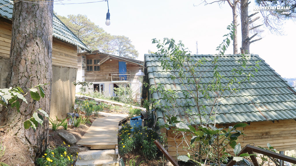 Đường vào các căn nhà Bungalow HomeFarm