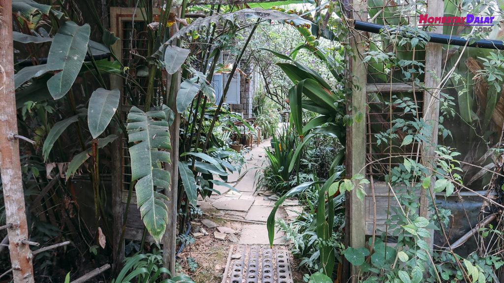Con đường vào khu vườn Tre's House - Nhà Của Tre