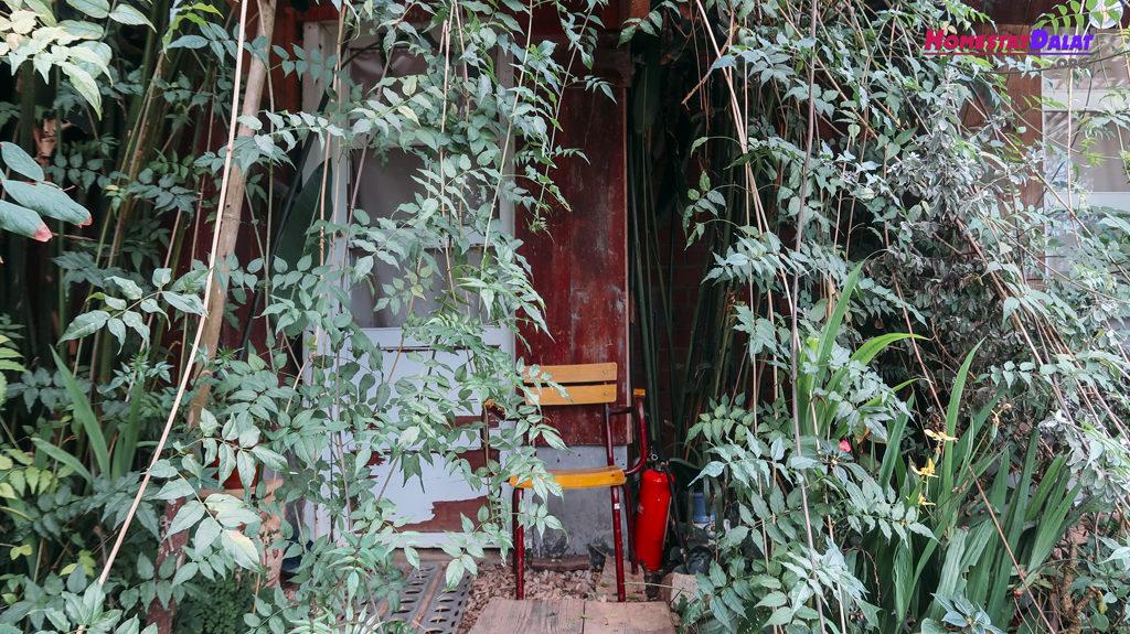 Trước cửa của các căn phòng Nhà Của Tre House luôn là cây xanh