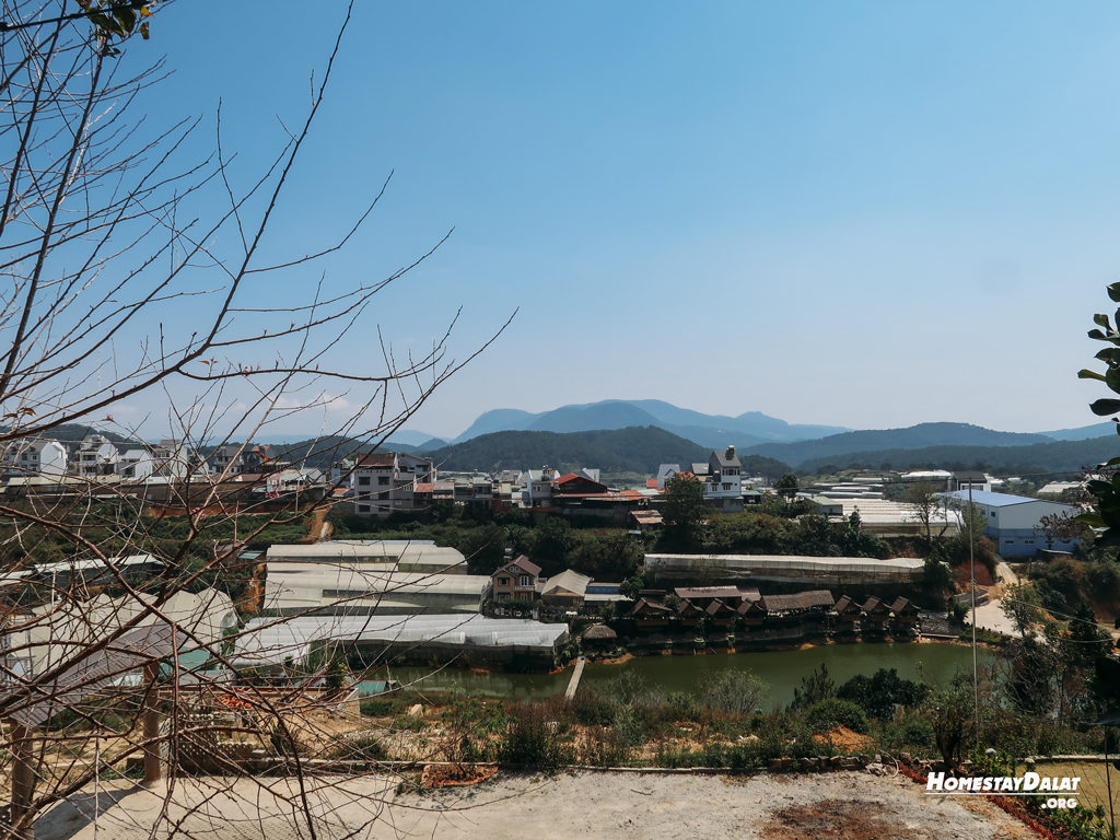 View đồi HomeFarm Đà Lạt