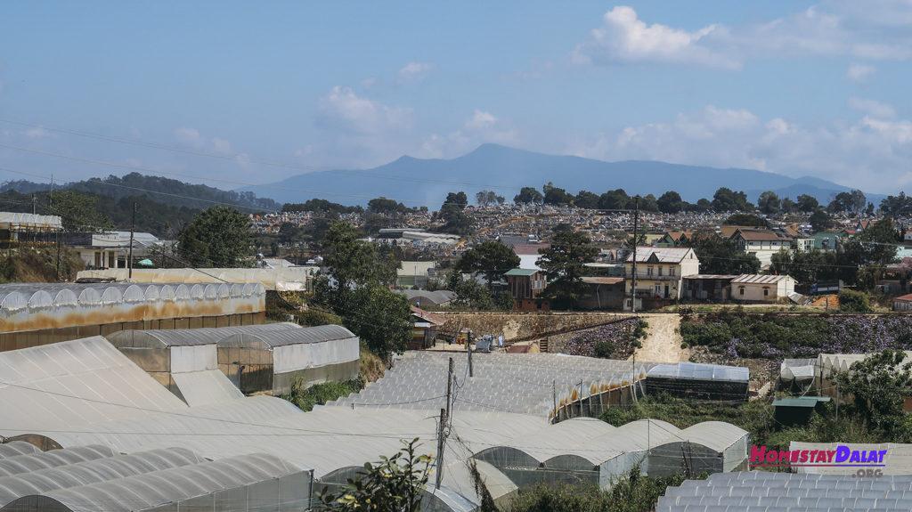 View tuyệt vời với những nhà kín Trại Mát