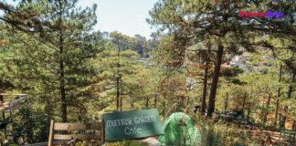 Moonraise Garden vừa là quán cafe vừa là homestay