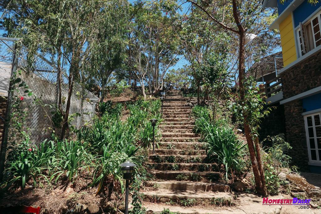 Những bậc thang nối homestay Moonraise Garden với đường Đặng Thái Thân