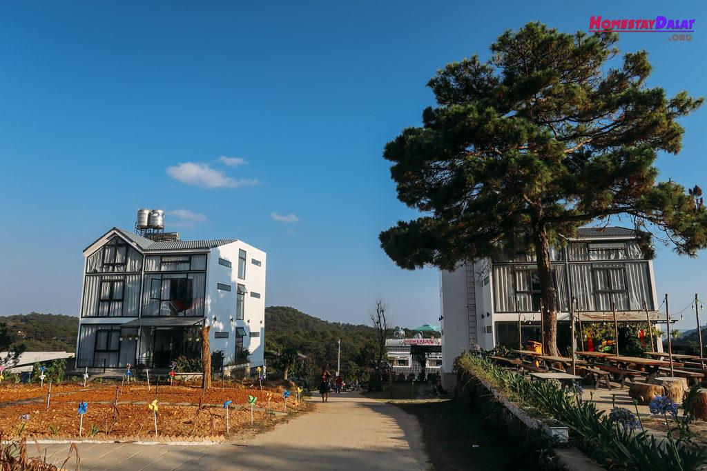 The Kupid homestay gồm nhiều ngôi nhà khác nhau