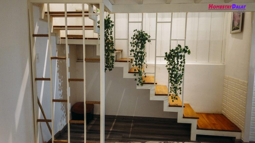 Cầu thang dẫn xuống phòng bếp Vin House