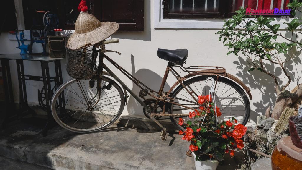 Chiếc xe đạp dễ thương trước sân Nhà Của Bảo