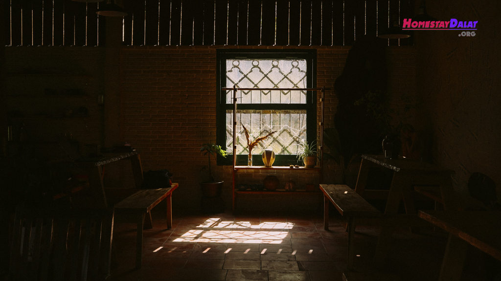 Những tia sáng len lỏi quanh ngôi nhà buổi trưa