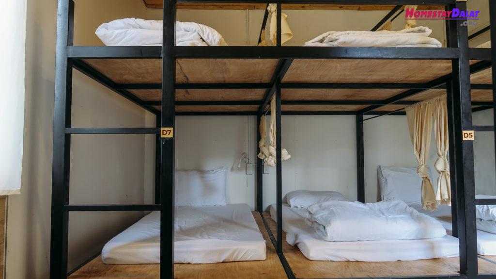 Phòng dorm Teepee homestay