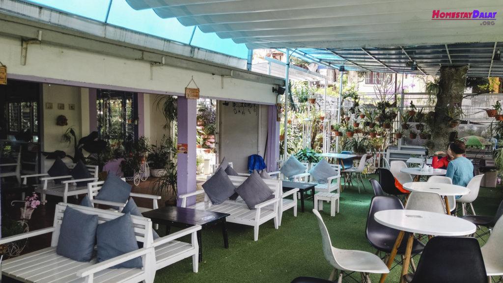 Không gian quán cafe Daily Đà Lạt