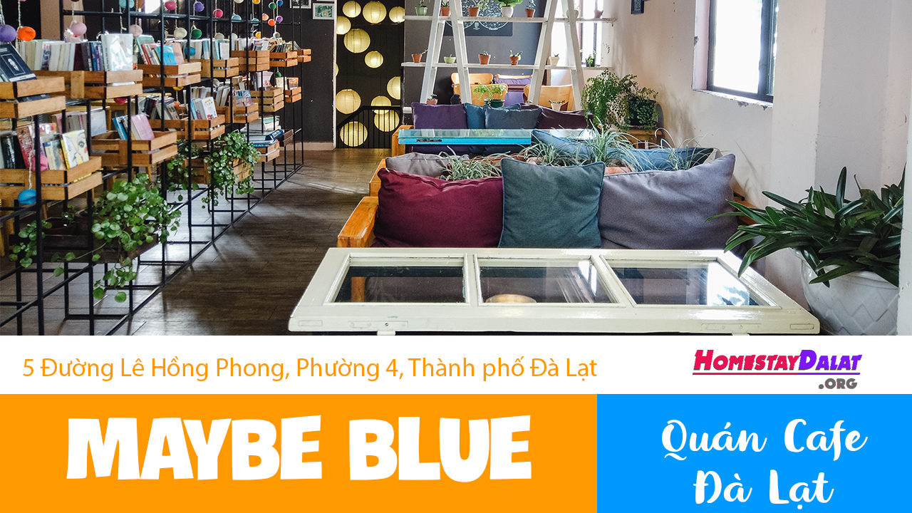 Giới thiệu quán coffee Maybe Blue Dalat